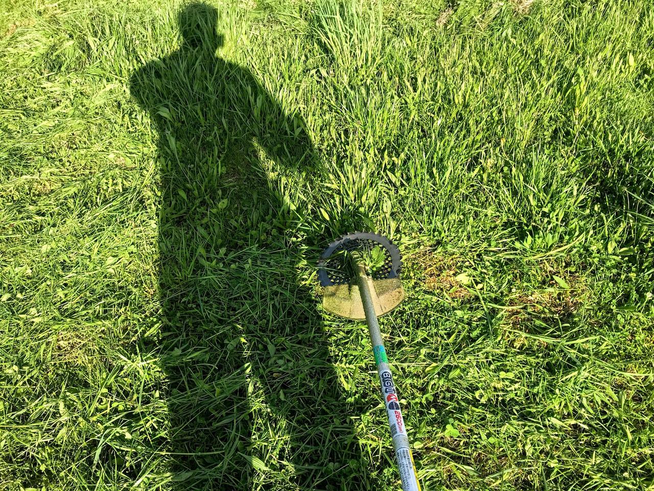 今シーズン草刈りまさおはじめ。